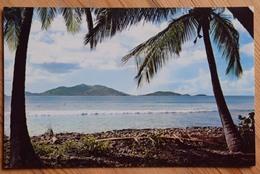 Virgin Islands - Cane Garden Bay - Iles Vierges - (n°12803) - Vierges (Iles), Britann.