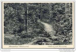 Berlin-Schulzendorf - Waldweg Nach Hermsdorf - Tegel