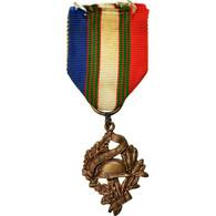 France, Mérite UNC, Droits Des Combattants, Médaille, Excellent Quality - Militares