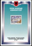 Albania 1997 / Albanian Fauna - Curly Pelican / Prospectus, Leaflet, Brochure - Albanie