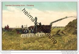 Canadian Harvesting - Threshing - Dreschmaschine - Landwirtschaft - Manitoba