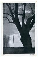 PHOTOGRAPHER : DR. A.S. - ALTER - 1900-1949