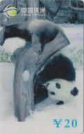 Télécarte De Chine - Animal - PANDA GEANT Dans La Neige - China Tietong Phonecard - Pandabär - 455 - Chine