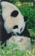 Télécarte De Chine - Animal - PANDA GEANT & Cube De Glace - China Tietong Phonecard - Pandabär - 456 - Chine