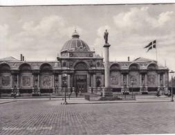 COPENHAGEN. THE GLYPTOTHECA SCULPTURE GALLERY. RUDOLF OLSEN. CIRCA 1940's- BLEUP - Denemarken