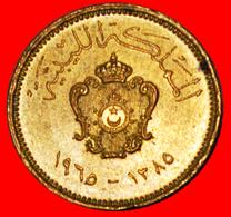 # STAR: KINGDOM LIBYA ★ 1 MILLIEME 1385-1965 UNC MINT LUSTER! LOW START ★ NO RESERVE! - Libyen