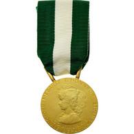 France, Médaille D'honneur Communale, Régionale Et Départementale, Médaille - Army & War