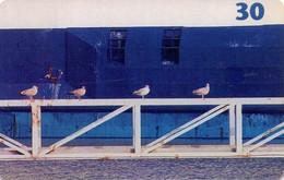 TARJETA TELEFONICA DE DINAMARCA. TDD035, Seagulls (048) - Dinamarca