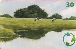 TARJETA TELEFONICA DE DINAMARCA. TDD037, Watercolour Painting (053) - Dinamarca