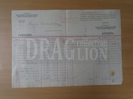DC31.13  Hungary  -Old Commercial Document -  HANGYA Fogy. Szövetkezet - 1923 - Invoices & Commercial Documents