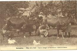(BRETAGNE)(22  COTES DU NORD)(GUINGAMP )( ECOLES )( AGRICULTURE )( LAITERIE ) - Guingamp