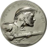 France, Médaille, Première Guerre Mondiale, Offensive Britannique De 1917 - France