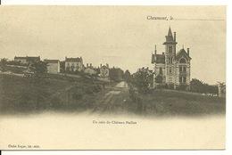 52 - CHAUMONT / UN COIN DU CHATEAU PAILLOT - Chaumont