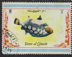 PIA - ARABIA DEL SUD-EST : UMM AL QIWAIN - 1967 : Pesci - (Yv 69) - Arabia Saudita