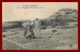 Trégastel * Chercheurs De Vers   (scan Recto Et Verso )  édition Lespinasse - Trégastel