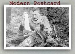 Red Cross Dog Carrying Bandages. United Kingdom, Royaume-Uni Croix Rouge Chien, Rotes Kreuz Hund Großbritannien - Red Cross
