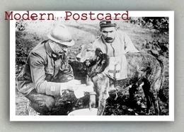 Red Cross Dog (World War I ? Austria ?) Autriche(?) Croix Rouge Chien , Rotes Kreuz Hund Österreich (?) - Red Cross