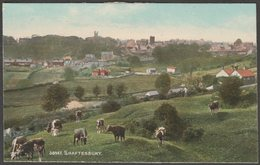 General View, Shaftesbury, Dorset, C.1910 - Photochrom Artotype Postcard - England