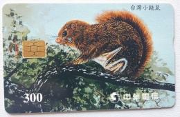 Taiwan Chip Card  , Animal  Squirrel - Taiwan (Formosa)