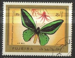 PIA- ARAB. SUD EST - FUJEIRA - 1967 - Farfalla  -(Yv P.A. 12) - Arabia Saudita