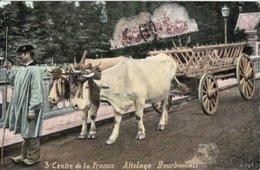 AGRICULTURE // ATTELAGE BOURBONNAIS - CENTRE DE LA FRANCE - ED L.V & Cie - Equipos