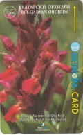 BULGARIA(GPT) - Elder-flowered Orchid/Bulgarian Orchids 4, CN : 57BULA, Tirage 40000, 08/98, Used - Bulgaria