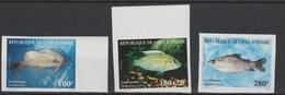 Côte D'Ivoire Ivory Coast 1999 IMPERF NON DENTELES Poissons Fische Fishes Marine Fauna Faune MNH ** - Pesci