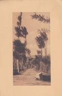 CARTOLINA - POSTCARD - DA IDENTIFICARE - Cartoline