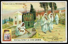 LIEBIG - FR - 1 Chromo - Série/Reeks S 0874 - VOYAGE DANS LA MEDITERRANEE: Algérie, Cimetière Arabe Près De Blidah. - Liebig
