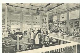 Les Etablissement Delhaize Frères Et Cie Pavillon De Dégustation De Charleroi 1911   (9870) - Charleroi