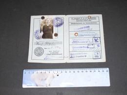 UNIVERSITAT BONN- AUSWEISKARTE - PAUL HOGEL - 1929/1933 - Historical Documents
