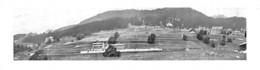 Suisse Vers 1900 - Lieu à Déterminer - Tirage D'imprimerie De L'époque ( Papier ~20 X 5.5 Cm) - Reproductions