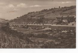 SEPIA POSTCARD - GENERAL VIEW  - YNYSDDU - MONMOUTHSHIRE - Monmouthshire