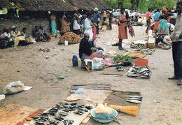 1 AK Namibia * Fischmarkt In Katima Mulio Im Caprivi-Zipfel - Hauptstadt Der Region Sambesi (ehemals Caprivi) - Namibia