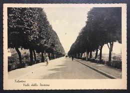 Tolentino Viale Della Stazione Marche Macerata Viaggiata 1950 Cod.c.2061 - Macerata