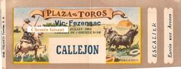Billet De Corrida Du  14/07/1962 Arènes De VIC-FEZENSAC 32  - Scans Recto-verso - Tickets - Vouchers