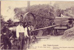 23 2542 Types Creusois Batteuse - France