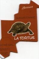 MAGNETS    PUBLICITEE   BROSSARD SAVANNE   L'AFRIQUE    LA TORTUE - Animals & Fauna
