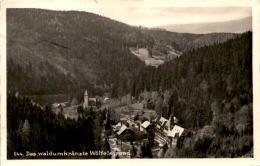 Das Waldumkränzte Wölfelsgrund (544) - Polen