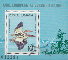 Romania CTO Perforated And Imperforated SSs - Stamps
