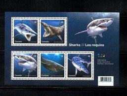 CANADA, 2018,FISHES-SHARKS, M/S,  MNH**, NEW!! - Fishes