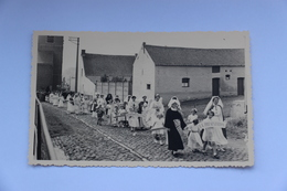 38702   -   Hacquegnies  -  Carte  Photo  -  Environs De Frasnes-lez-Anvaing - Frasnes-lez-Anvaing