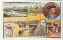 Chromo Liebig Colonies Françaises - Indo-chine Française - Advertising