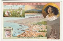Chromo Liebig Colonies Françaises - La Martinique - Pubblicitari