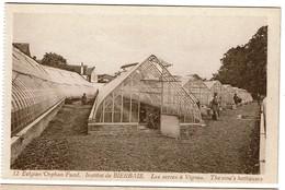 Belgian Orphan Fund. - Institut De Bierbais - Les Serres à Vignes - The Vine's Hothouses - Edit. Belge - 2 Scans - Mont-Saint-Guibert