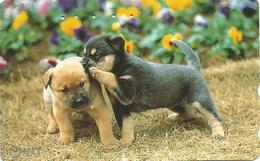 Japan 1993. Dog  Chien Dogs Puppy - Dogs