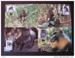 SERIE 4 CARTES MAXIMUM OFFICIELLES WWF GUINEE EQUATORIALE SINGES - W.W.F.