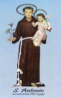 Careri RC - Santino Poster SANT'ANTONIO DI PADOVA (formato A4) - PERFETTO P52 - Religion & Esotericism