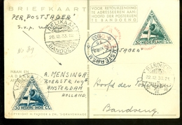L.P.  Uit 1933 PER POSTJAGER * PELIKAAN * Gelopen Van AMSTERDAM Naar BANDOENG NEDERLANDS-INDIE V.v. RETOUR   (11.240f) - Airmail