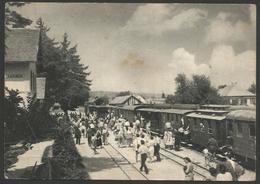 Croatia-----Samobor-----old Postcard - Croacia